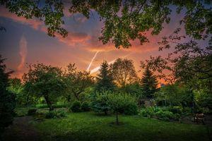Бесплатные фото закат,поляна,сад,участок,деревья,пейзаж