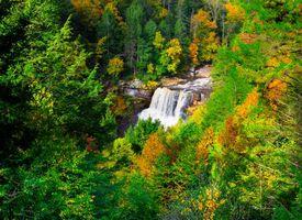 Фото бесплатно Государственный парк Блэкуотер, Западная Виргиния, осень