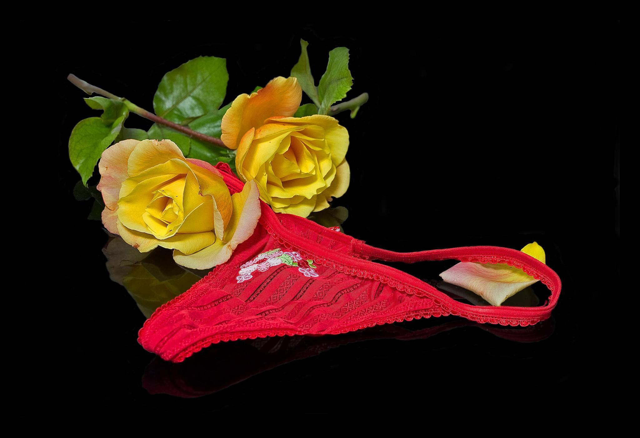 Обои розы, цветы, женские трусики, чёрный фон
