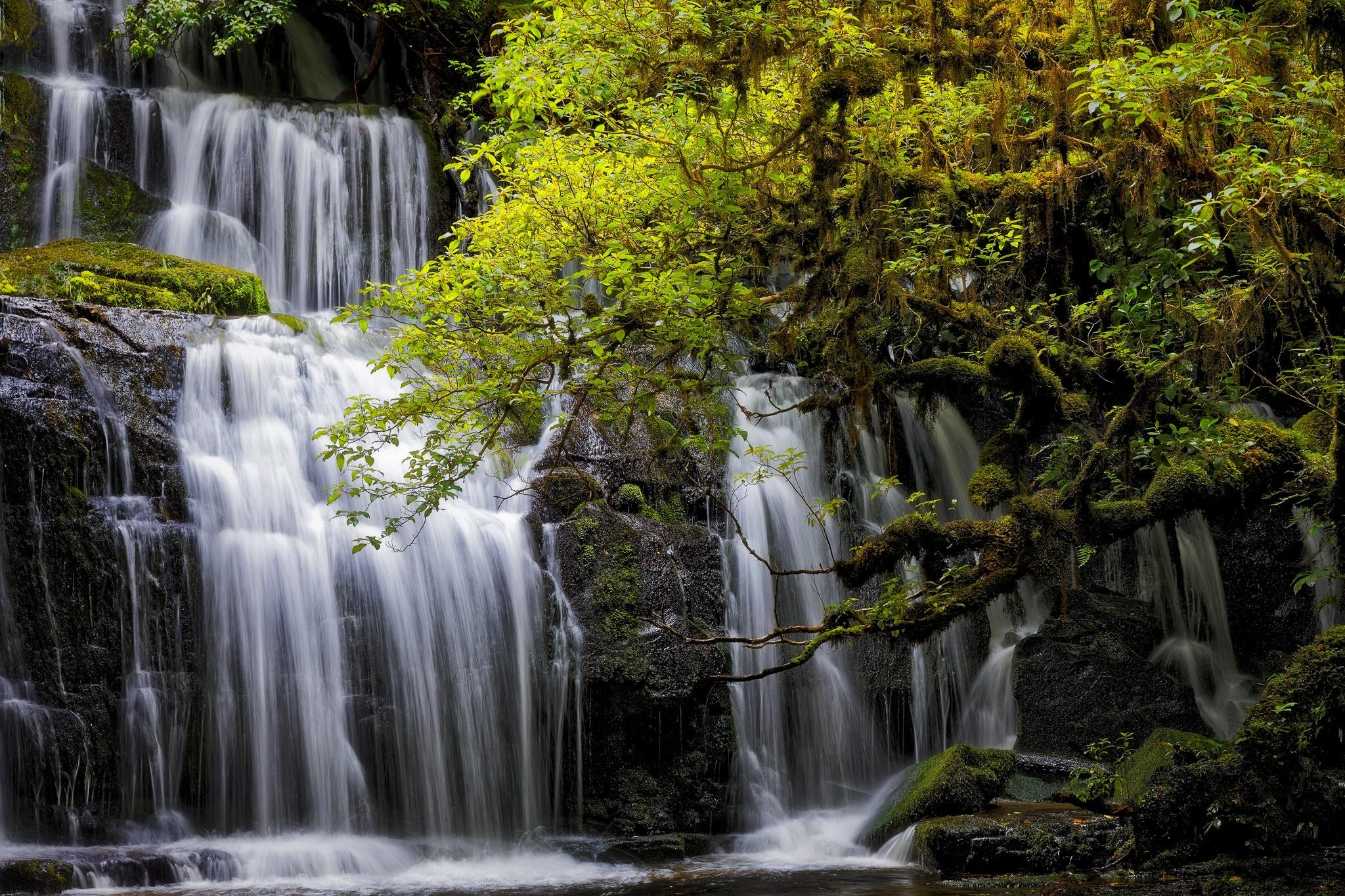 Обои Purakanui Falls, New Zealand, South island, водопад
