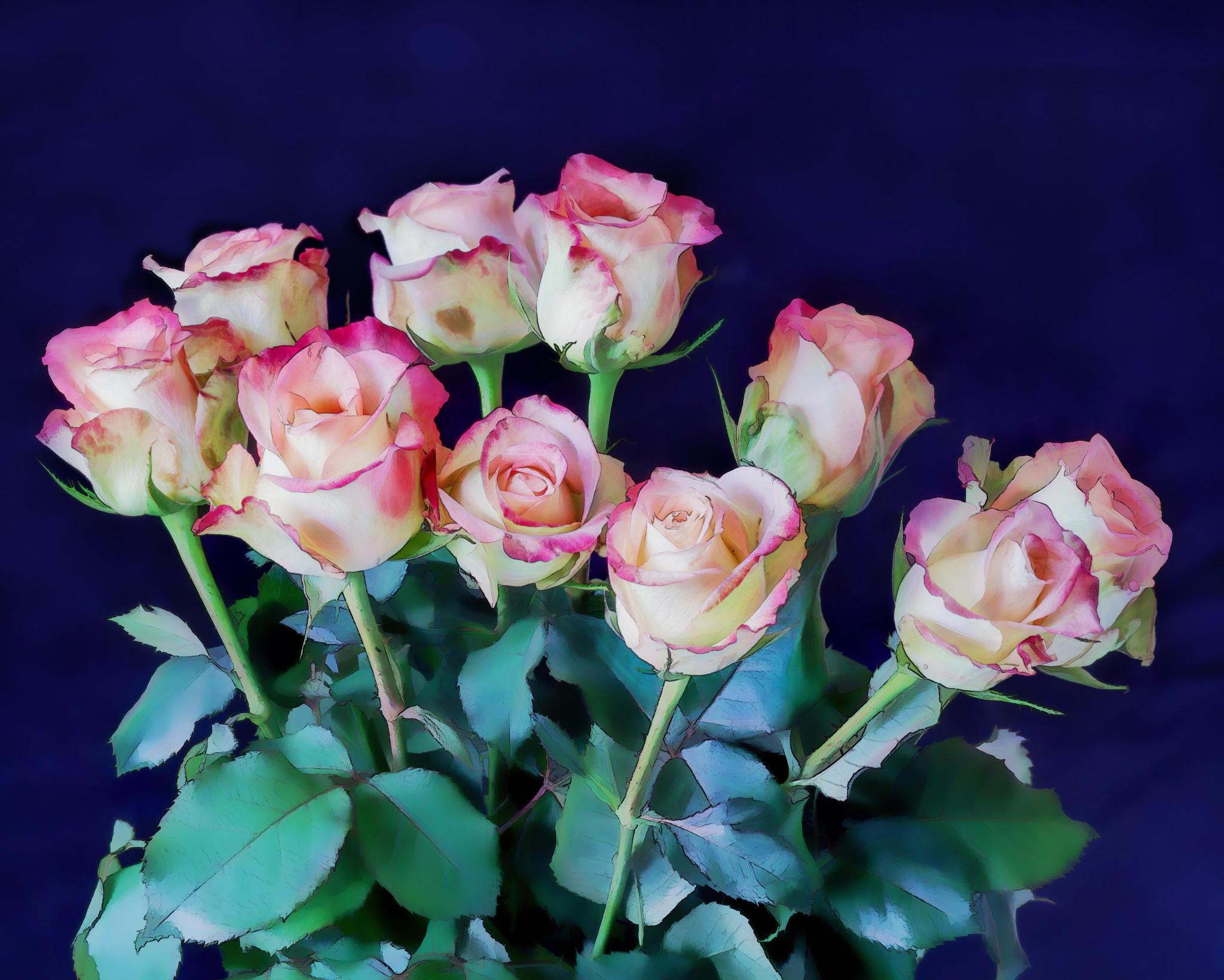 Обои розы, цветы, букет, флора