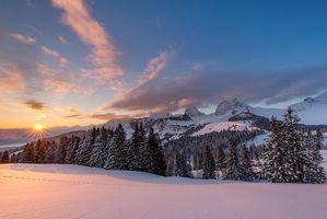 Бесплатные фото Швейцария, закат, зима, горы, деревья, пейзаж