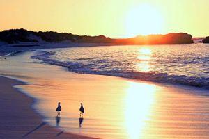 Бесплатные фото море, пляж, закат