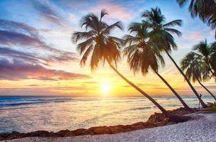 Скачать обои пляж, тропики