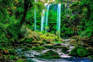 Бесплатные фото Новая Зеландия,Северный остров,водопад,речка,камни,деревья,пейзаж