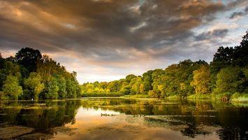 Бесплатные фото осень,озеро,деревья,закат,пейзаж