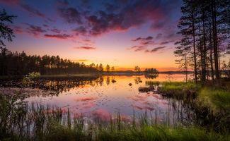 Бесплатные фото закат, озеро, деревья, пейзаж, Финляндия