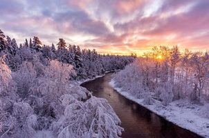 Бесплатные фото зима,закат,река,лес,деревья,пейзаж