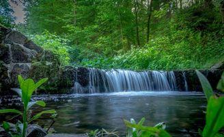 Заставки лес, деревья, река, водопад, природа