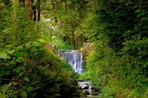 Фото бесплатно парк, водопад, лес