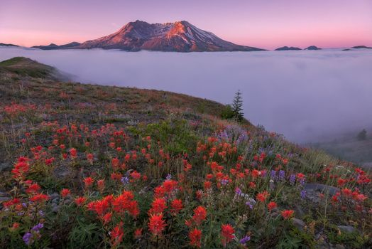 Заставки Гора Сент-Хеленс, Вашингтон, пейзаж