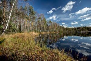 Бесплатные фото Черное озеро,Московская область,Россия