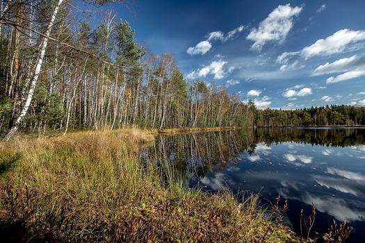 Фото бесплатно Черное озеро, Московская область, Россия
