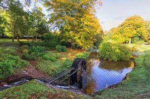 Фото бесплатно деревья, ручей, колесо от мельницы
