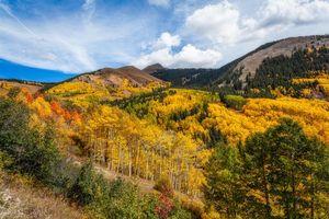 Фото бесплатно Колорадо, деревья, горы