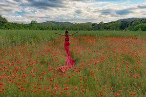 Фото бесплатно цветы, деревья, девушка
