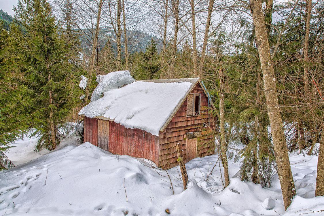 Фото бесплатно лес, зима, домик, снег, сугробы, деревья, пейзаж, пейзажи