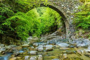 Бесплатные фото река, лес, деревья, мост, арка, камни, пейзаж