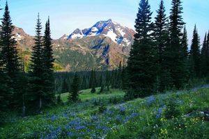 Фото бесплатно пейзаж, поле, горы