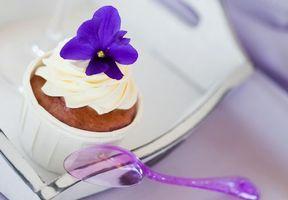 Фото бесплатно keks, pirozhnoe, krem, desert