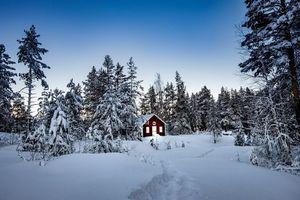 Бесплатные фото зима,снег,сугробы,лес,деревья,домик,пейзаж