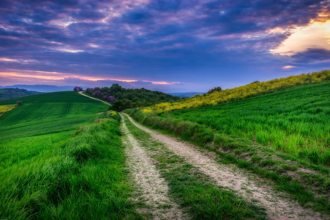 Фото бесплатно поле, холмы, трава - на рабочий стол