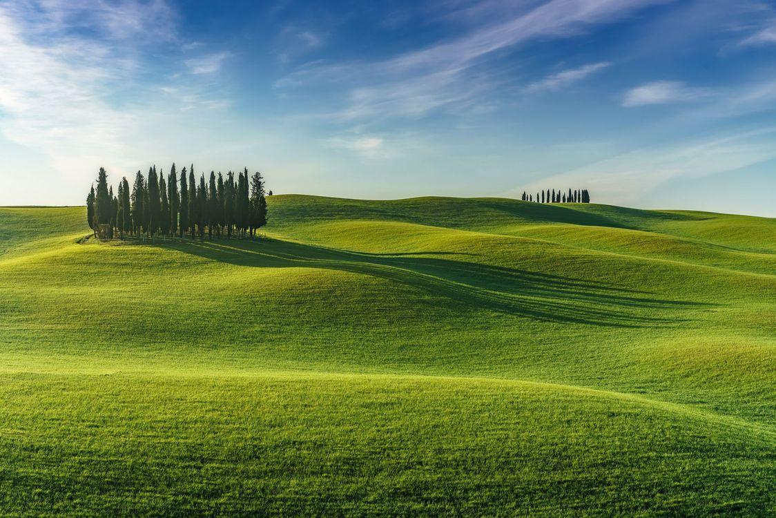 Фото бесплатно пейзаж, деревья, холмы - на рабочий стол