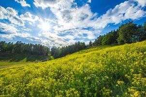 Фото бесплатно холмы, дорога, небо