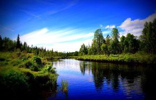 Заставки река, отражение, деревья