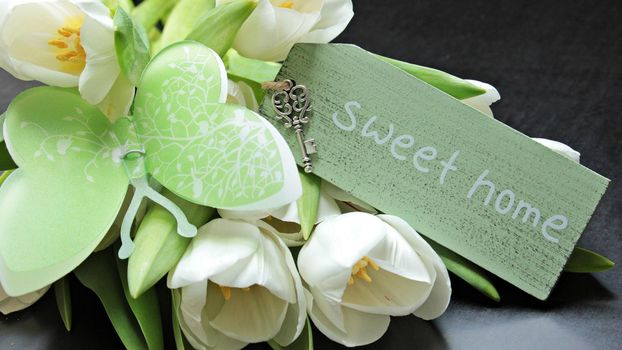 Photo free flowers, tulips, butterfly