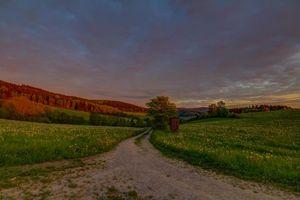 Бесплатные фото поле,дорога,деревья,холмы,пейзаж
