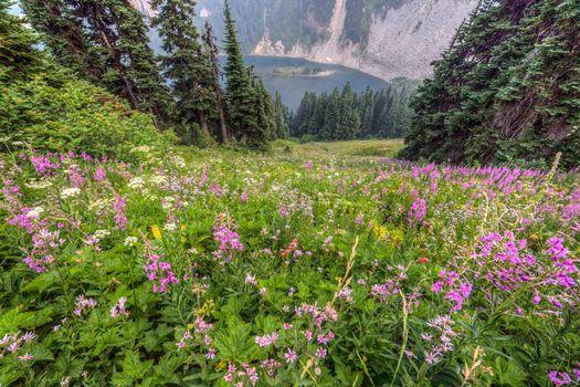 Фото бесплатно Lake Ann, Скагит Скагитская долина Скагитский уезд Северные Каскады Озеро Энн
