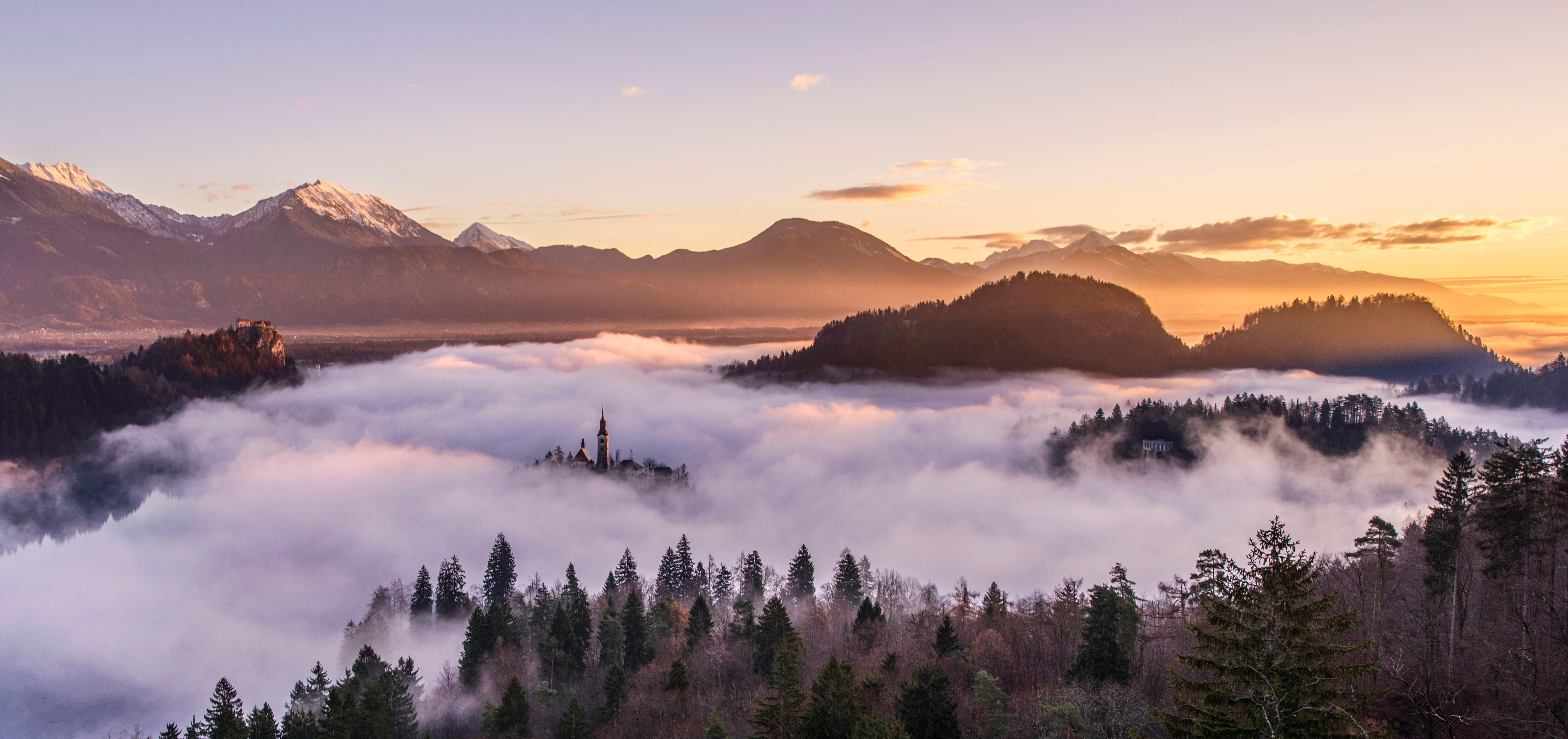 Обои горы, елки, туман, закат