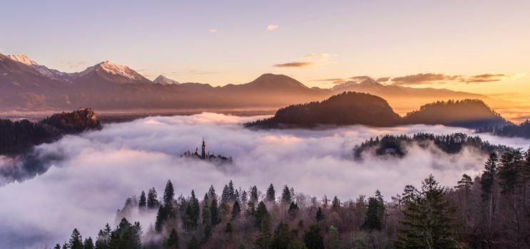 Фото бесплатно горы, елки, туман