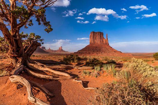 Фото бесплатно Monument Valley, штат Юта, горы