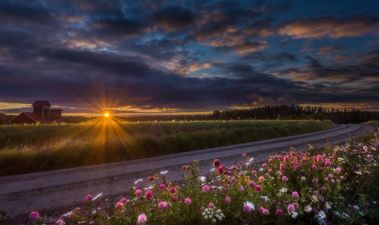 Картинка закат, поле, дорога, цветы, домик, пейзаж на рабочий стол. Скачать фото обои пейзажи