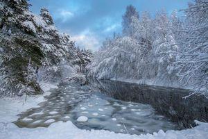 Бесплатные фото зима,река,лес,деревья,пейзаж