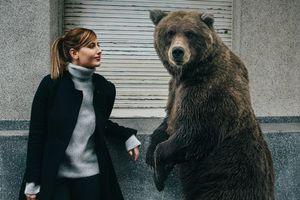 Фото бесплатно девушка и медведь, улица, дом
