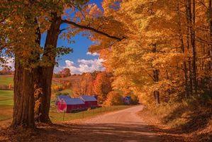 Обои Vermont, осень, холмы, дорога, деревья, дома, пейзаж