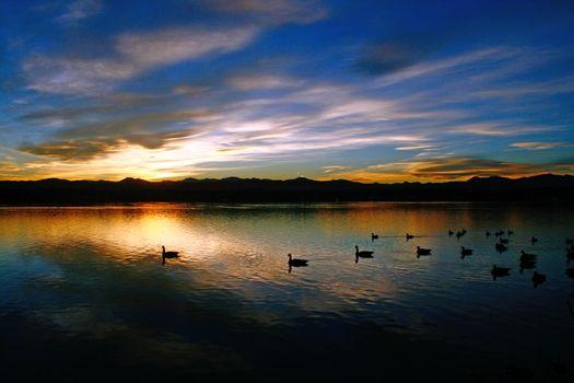 Заставки озеро, закат, утки