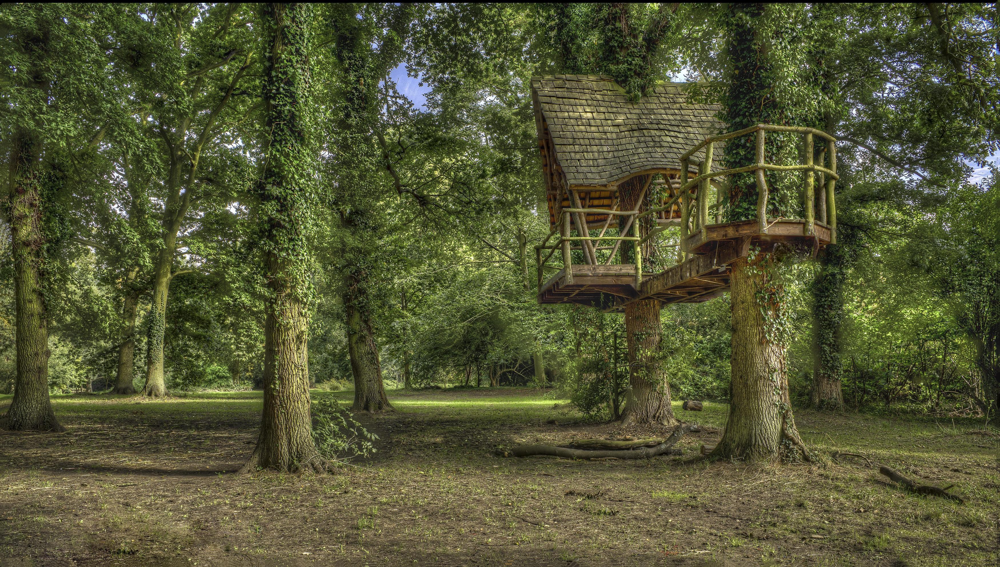 Обои Kelmarsh Hall, Northamptonshire, England, лес