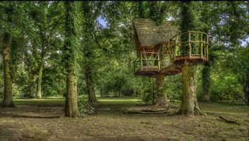 Бесплатные фото Kelmarsh Hall, Northamptonshire, England, лес, парк, деревья, пейзаж