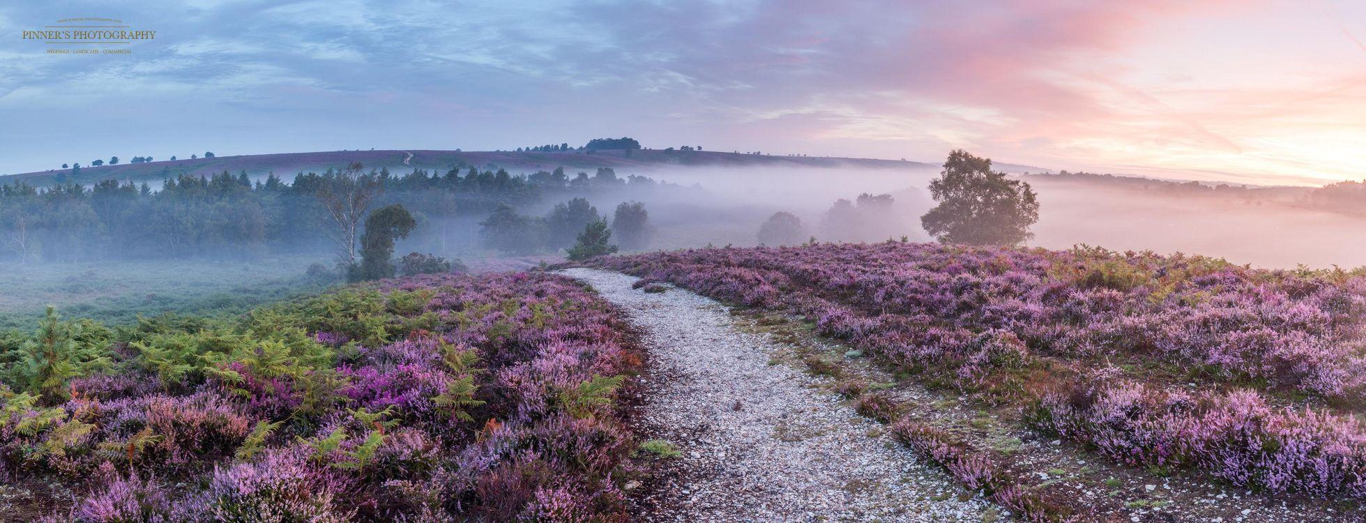 Фото бесплатно поле, панорама, туман - на рабочий стол