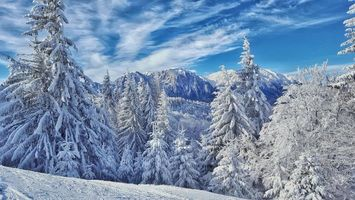 Бесплатные фото зима,горы,деревья,пейзаж