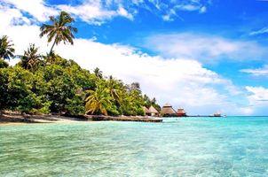 Бесплатные фото Мальдивы,море,остров,пляж,пальмы,отдых