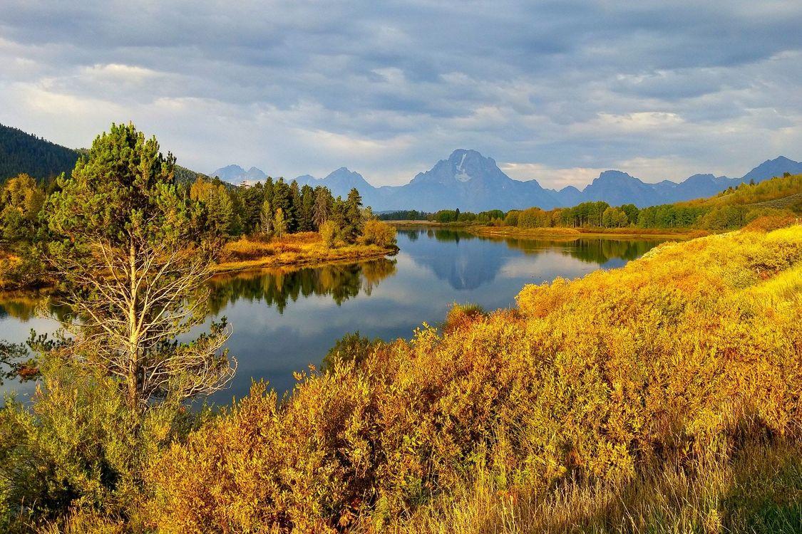 Фото бесплатно Grand Teton National Park, Wyoming, горы, река, деревья, пейзаж, пейзажи