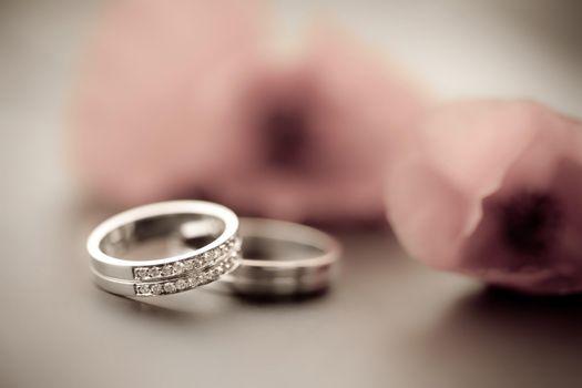 Фото бесплатно свадьба, кольца, розы