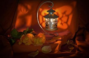 Бесплатные фото лампа,розы,цветы,натюрморт
