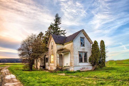 Photo free field, abandoned house, trees
