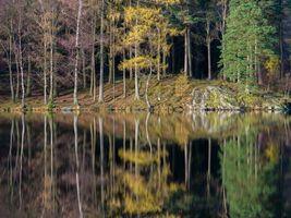 Заставки озеро, осень, лес